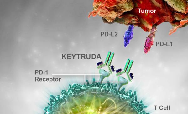 Thuốc miễn dịch Keytruda – Bước tiến mới trong điều trị ung thư dạ dày thực quản