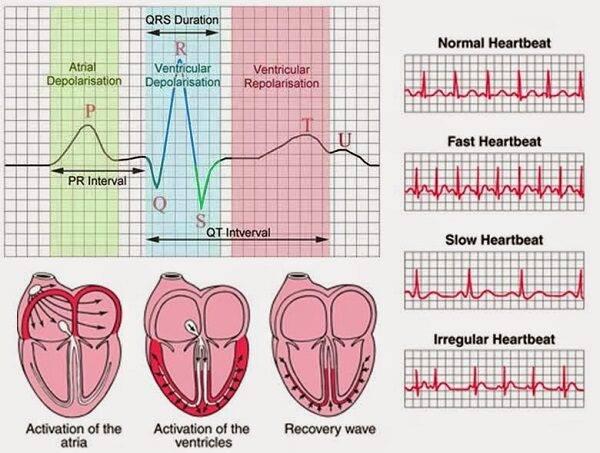 Quy trình kỹ thuật đo điện tim