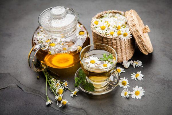 Trà cúc hoa- thức uống cho sức khỏe vàng