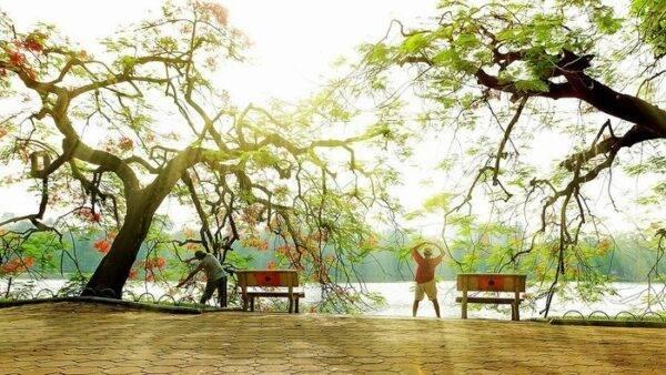 Người Việt sống lâu nhưng nhiều bệnh