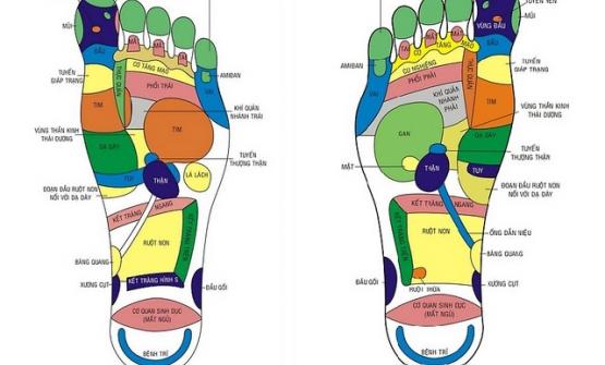 Xoa bóp bàn chân trị bệnh và nâng cao sức khỏe